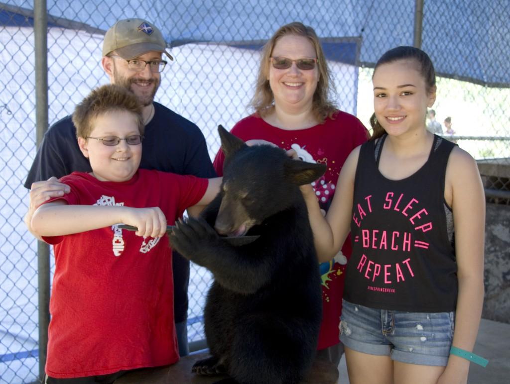 bears-family
