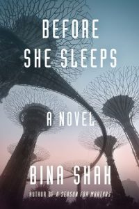 Before She Sleeps book cover
