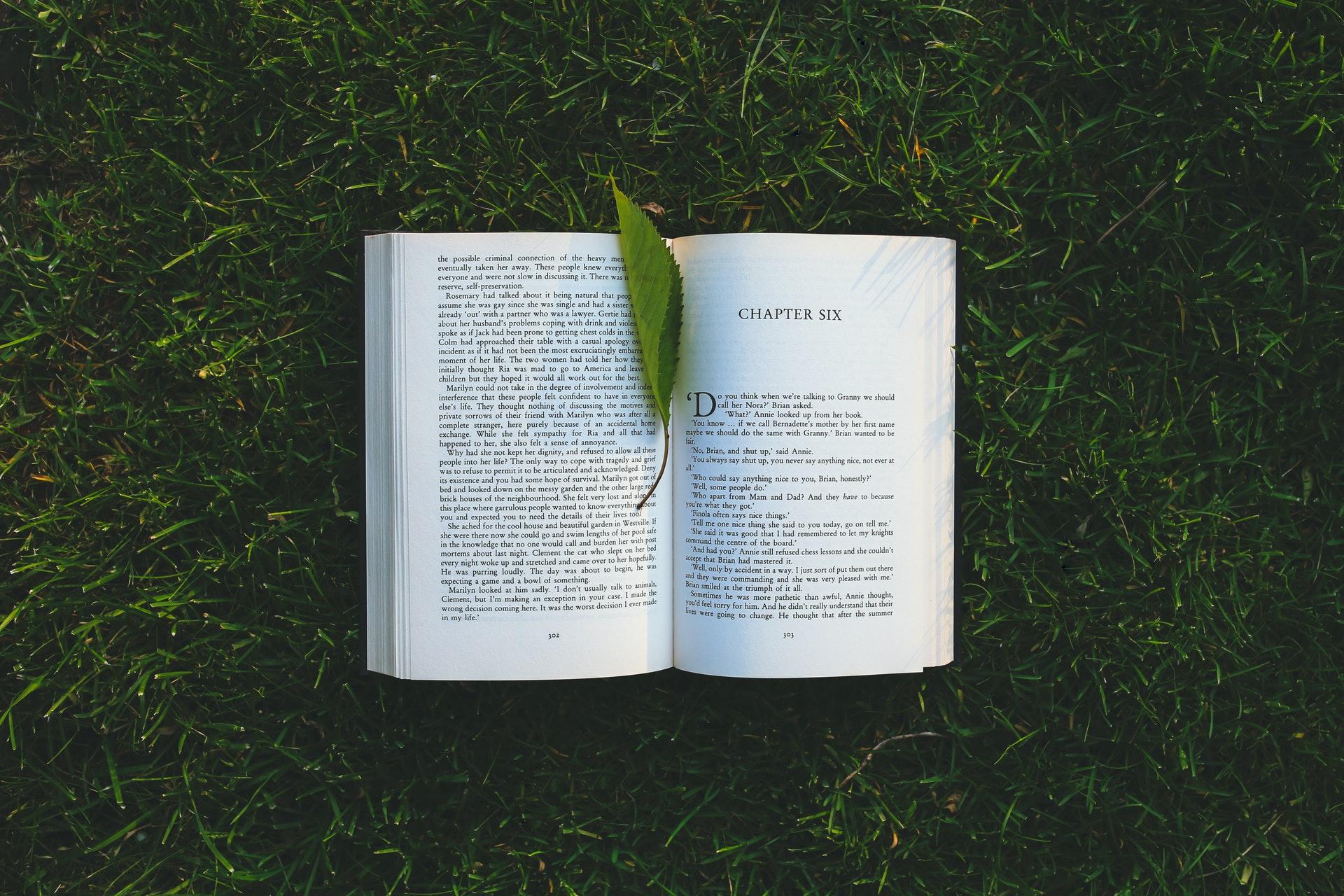 Cover photo- Book